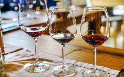 The Vineyard At Windham