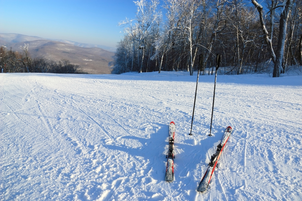 Photo of Nordic Skis and Poles, a Catskills Winter Novelty.