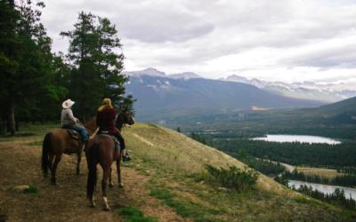 Book a Horseback Riding Catskills Tour