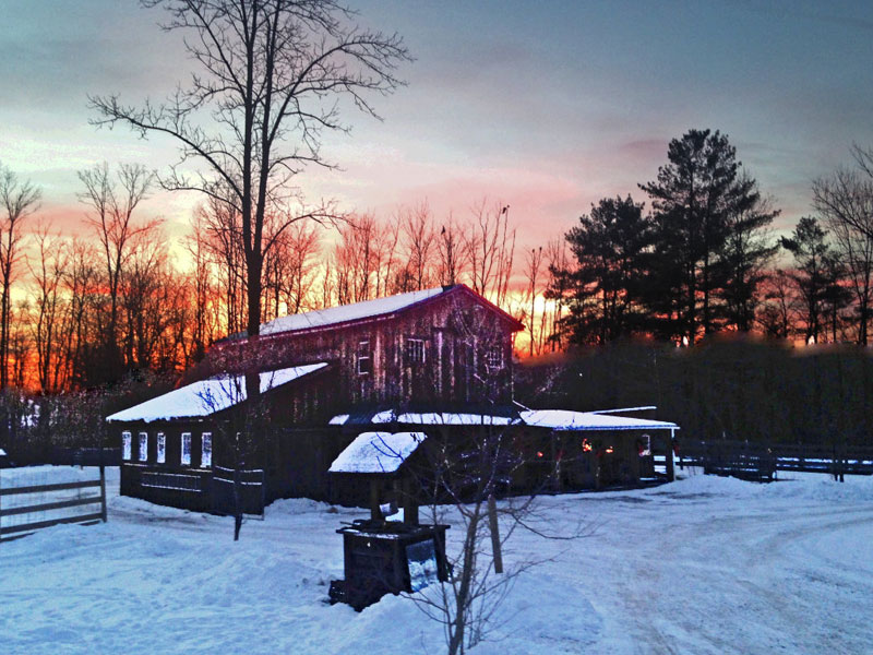 Cluckin-A-Critter-Farm | AlbergoAllegria Bed & Breakfast | Catskills, NY