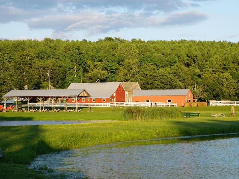 K-K-Equestrian-Center | AlbergoAllegria Bed & Breakfast | Catskills, NY