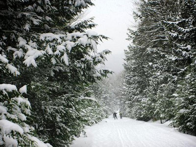 Mountain-Trails-Cross-Country-Ski-Center | AlbergoAllegria Bed & Breakfast | Catskills, NY