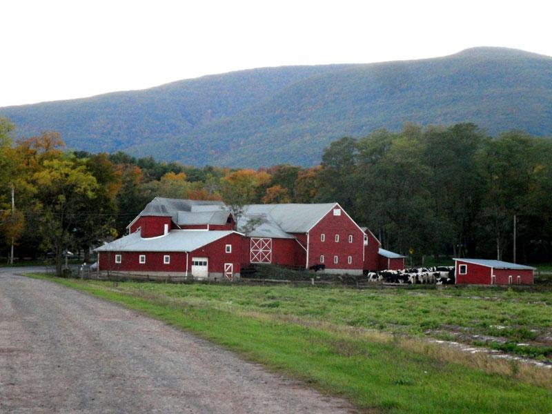 Story-Farms-img | AlbergoAllegria Bed & Breakfast | Catskills, NY