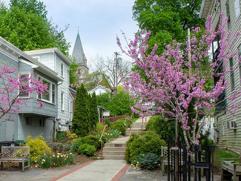 Town-House-Antiques-Bob-Barnes-Toys-Ephemera-latest-img | AlbergoAllegria Bed & Breakfast | Catskills, NY