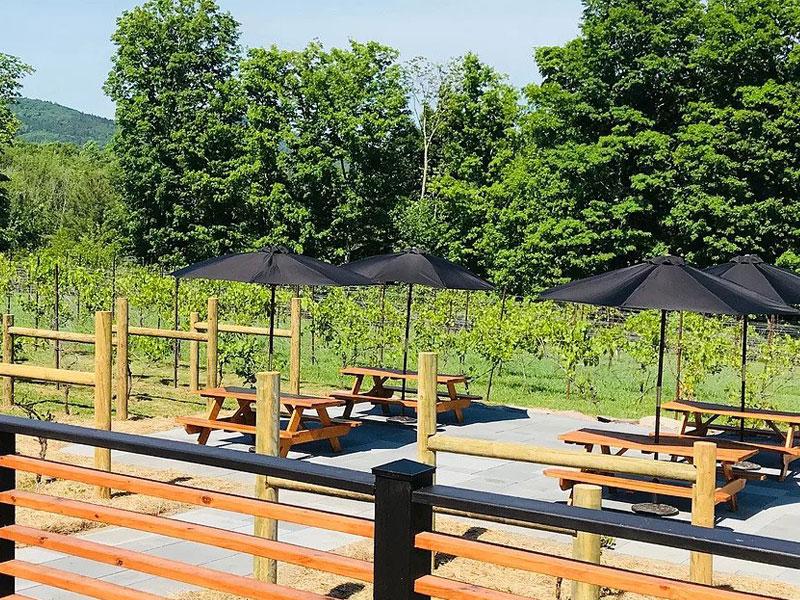 Windham-Vineyard-Winery-new-img | AlbergoAllegria Bed & Breakfast | Catskills, NY