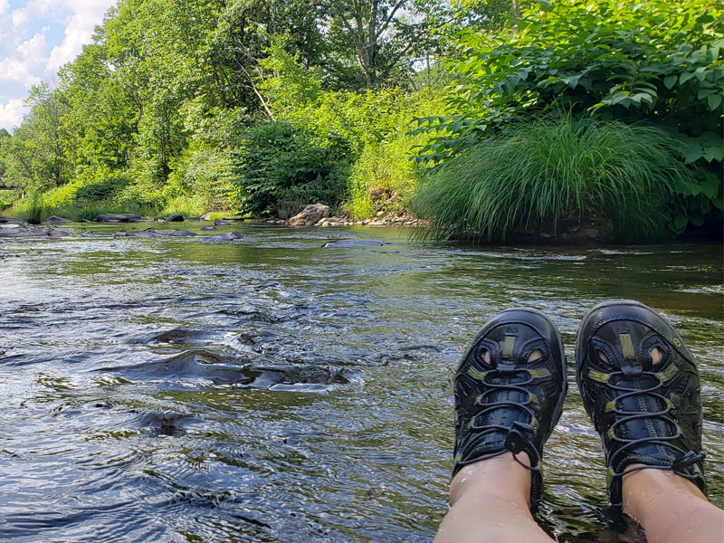 Experience Curiosity | AlbergoAllegria | Windham, NY Catskills