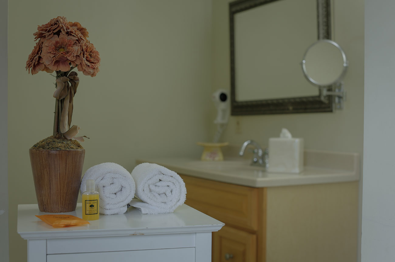 Towels and Sanitizer Esopus Room | AlbergoAllegria Bed & Breakfast | Catskills, NY
