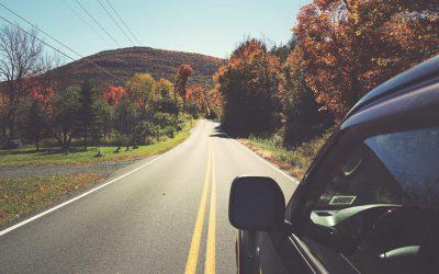 Capture Catskills Fall Foliage at Vidbel Mountain Homestead